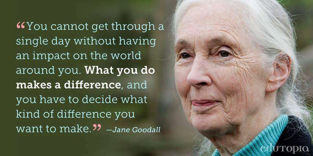 Jane Goodall quote