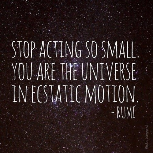 motion quote